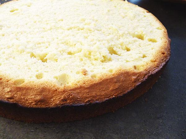 Torte Bisquitteig