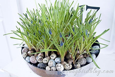 Metallschale mit Blumen und Wachteleiern füllen