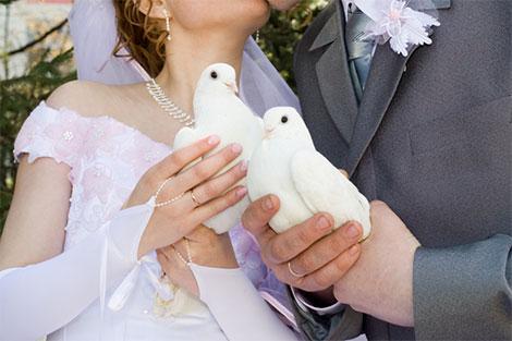 Auch die weißen Tauben für einen unvergesslichen Moment nach der Trauung sollten pünklich reserviert werden