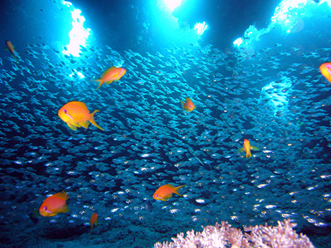 Die Farben des Meeres sind vor allem beruhigend
