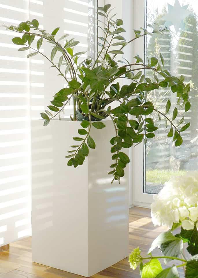 pflanzk bel aus fiberglas bieten viele vorteile kreativliste. Black Bedroom Furniture Sets. Home Design Ideas