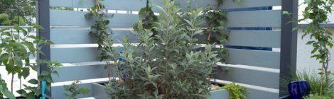 Mobiler Sichtschutz - stabil durch eingefassten Pflanzkasten