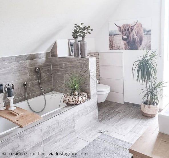 Diese Pflanzen Eignen Sich Fur Dein Badezimmer Kreativliste