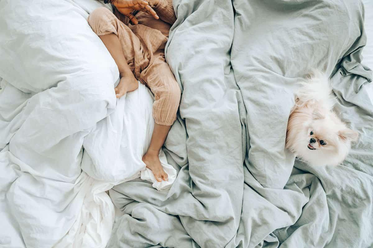 Was sind die Unterschiede bei Bettwäsche?