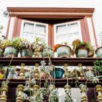 Blumentöpfe in Hülle und Fülle – auf dem kleinsten Balkon ist das möglich!